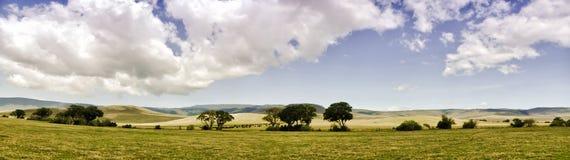 Panoramic View of Ngorongoro Royalty Free Stock Image