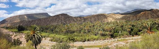 Panoramic View of Oasis in Paradise Valley Agadir Imouzzer Ida Outanane Morocco stock images