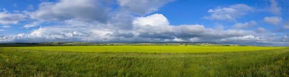 Panoramic View Of Field Stock Photo