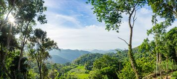 Free Panoramic View Of Green Forest In The Mountains Royalty Free Stock Photos - 192827208