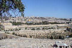 Panoramic view of old city of jerusalem from the mount of Olives stock photography