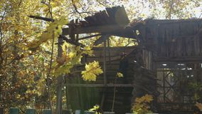 Panoramic view of the old, destroyed, wooden house in the deciduous autumn forest stock video