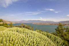 Panoramic view over Barrage Bin El-Ouidane, high Atlas. Royalty Free Stock Photo