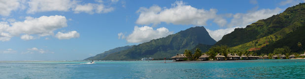 Panoramic view over the coast of Moorea royalty free stock image
