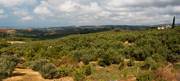Panoramic view over open countryside Stock Photography