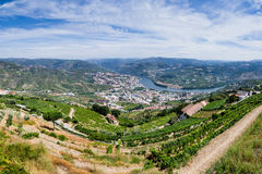 Panoramic view over River Douro Stock Images