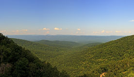 Panoramic View from Overall Run Falls Trail Stock Images