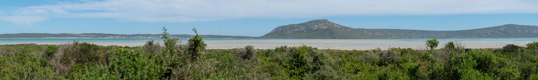 Panoramic view Overlooking Fynbos field with a lagoon in the background Royalty Free Stock Photo