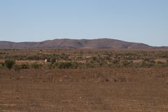 Panoramic view of paddock with windmill, water tanks and sheep royalty free stock photography