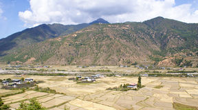 Panoramic view of paddy fields at the foothill of a mountain range Royalty Free Stock Photography