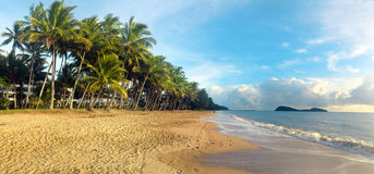 Panoramic view of Palm Cove in Queensland  Australia Royalty Free Stock Photo