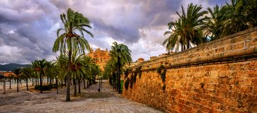 Palma de Mallorca, Majorca, Spain. Panoramic view of the palm tree garden and La Seu Cathedral in Plama de Mallorca, Majorca island, Spain, on dramatic stormy Stock Image