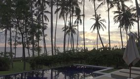 Panoramic view of a palm tree the sea and the pool on tropical the resort of Bali Indonesia stock video