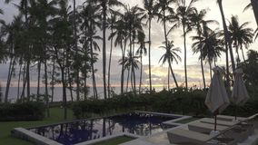 Panoramic view of a palm tree the sea and the pool on tropical the resort of Bali Indonesia stock video footage