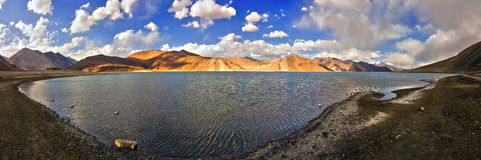Panoramic View of Pangong Lake Royalty Free Stock Images