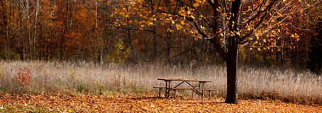 Panoramic view of park Royalty Free Stock Photography