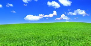 Panoramic view of peaceful grassland Stock Images
