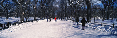 Panoramic view of pedestrians walking on fresh snow in Central Park, Manhattan, New York City, NY on a sunny winter day Stock Images
