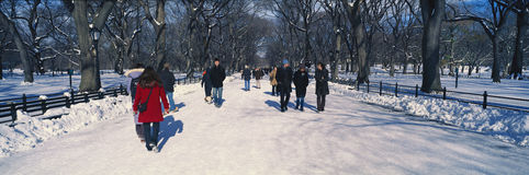 Panoramic view of pedestrians walking on fresh snow in Central Park, Manhattan, New York City, NY on a sunny winter day Royalty Free Stock Photos