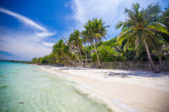 Panoramic view of perfect beach with green. Palms,white sand and turquoise water. See my other works in portfolio Royalty Free Stock Image