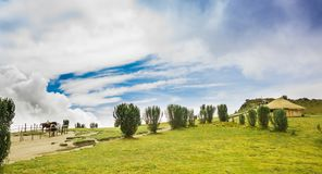 Panoramic view at the Pichincha volcano, with some native andes plants and horses with a typical hut in the horizont, in Royalty Free Stock Photos