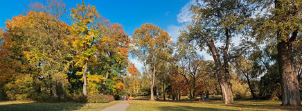 Panoramic view of the picturesque park Stock Photography