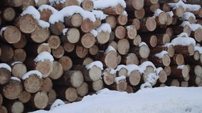 Panoramic view of pile of logs covered in snow on winter day. Panoramic view of pile of logs along road at sawmill covered in white snow on winter cloudy day stock video footage