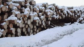 Panoramic view of pile of timber covered in snow on winter day. Panoramic view of pile of timber along road at sawmill covered in white snow on winter cloudy day stock video footage