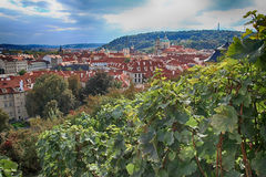 Panoramic view of Prague, Czech Republic. Stock Photo