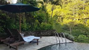 Scenic view in an Ubud resort in Bali, Indonesia stock video footage
