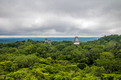 Panoramic view of rainforest and top of mayan temples at Tikal National Park - Guatemala Royalty Free Stock Photography