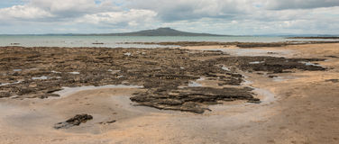 Panoramic view of Rangitoto Island Royalty Free Stock Photography