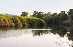 Panoramic view in the rays of the setting sun over the Alexander  River near Kfar Vitkin, in northern Israel. Panoramic view in the rays of the setting sun over royalty free stock photography