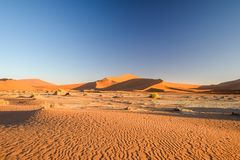Panoramic view of red sand dunes in Sossusvlei near Sesriem in famous Namib Desert in Namibia, Africa. Sossusvlei is a popular tourist destination, the dunes Stock Images
