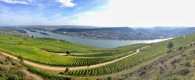 Panoramic view Rheingau region Royalty Free Stock Image