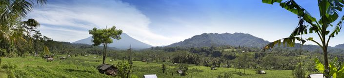 Panoramic view of rice terraces and mountains. Bali, Indonesia Royalty Free Stock Photo