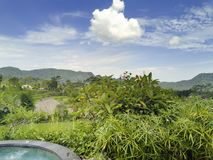 Panoramic view of rice terraces and mountains. Bali, Indonesia Royalty Free Stock Images