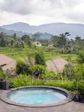 Panoramic view of rice terraces and mountains and the small pool in the foreground. Bali, Indonesia Royalty Free Stock Photography