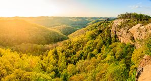 Red River Gorge in Kentucky. Panoramic view from the ridge top at Red River Gorge in Kentucky royalty free stock photography
