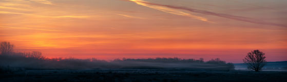 Panoramic view of the rising sun over a misty meadow. Early morn Stock Photography