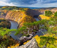 Panoramic view of river canyon with dark water and autumn colorful forest. Horseshoe bend, Vltava river, Czech republic. Beautiful Royalty Free Stock Photos