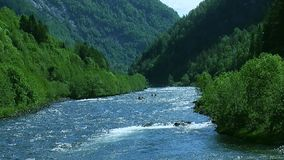 Panoramic view of river flow in mountains covered by green forest in summer sunny day. Boat floats. Blue sky stock video footage