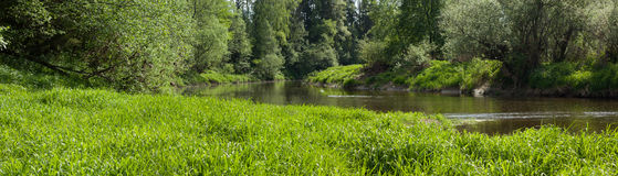 Panoramic view of river in forest Stock Image