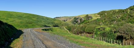 Panoramic view of a road through rolling hills with native bushland. Panoramic view of a road leading through the green rolling hills of Motutapu Island near Stock Photos