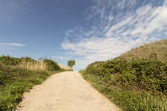 Panoramic view, road to Santiago de Compostela, La Rioja Royalty Free Stock Image