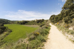 Panoramic view, road to Santiago de Compostela, La Rioja Royalty Free Stock Photography
