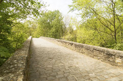 Panoramic view with Road to Santiago de Compostela, Navarre Royalty Free Stock Images