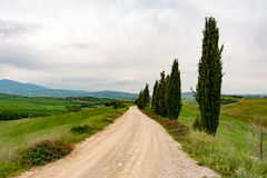 Panoramic view of a road in Val d'Orcia. Pienza, Siena, Tuscany, Italy stock photo