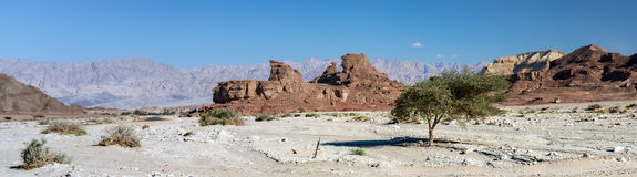Panoramic view on rocky valley of Timna Park, Israel Stock Photos