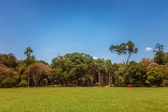 Panoramic view of Royal Botanical King Gardens, Peradeniya, Sri Lanka. Locates near Kandy Royalty Free Stock Photos